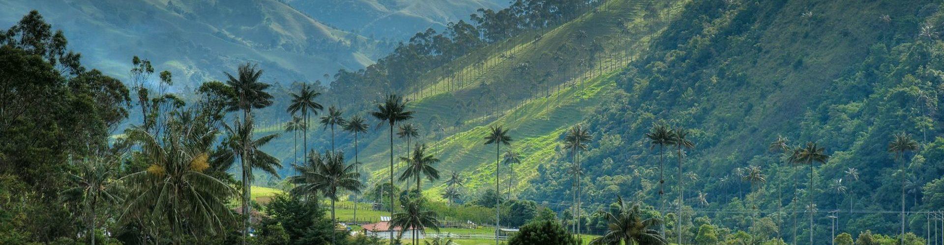 Kolumbien, Valle del Cocora, schönes Tal, Latin America Tours