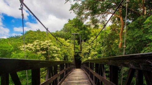 Nicaragua, Morgan's Rock Lodge, Hängebrücke, Regenwald, Latin America Tours