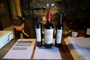 Argentinien, Mendoza, Weingut Achaval Ferrer, Weine und Olivenoele, Lujan de Cuyo, Latin America Tours