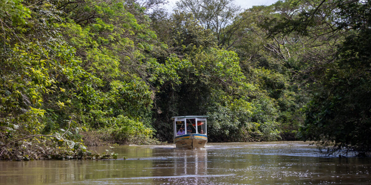 Costa Rica, National Park Palo Verde, Tampisque Fluss, Studienreise, Alessandra Rüfenacht, Latin America Tours